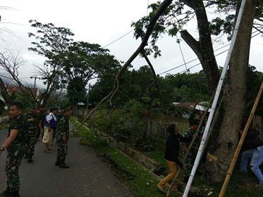 Kegiatan pemangkasan ranting pohon yang dianggap membahayakan di sepanjang jalur Asrama Kodim, Tondano Barat.